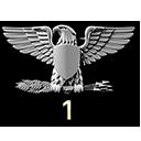 Colonel Service Star 1
