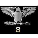 Colonel Service Star 8